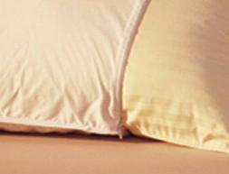 Allery Resist Pillow Protector King 20x30 inch Cover 100% Na