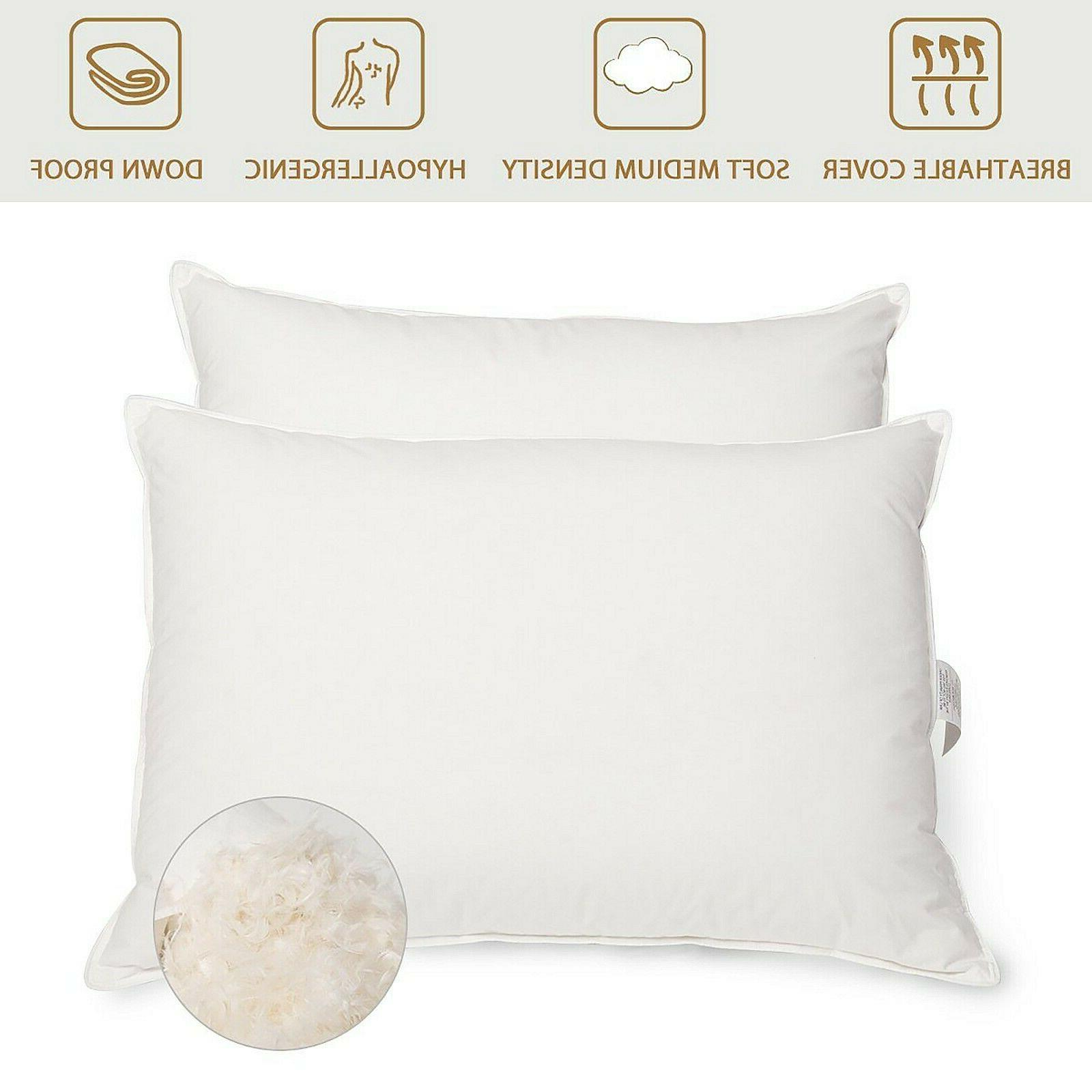 Peace Grey Feather Bed Pillows Pillow King