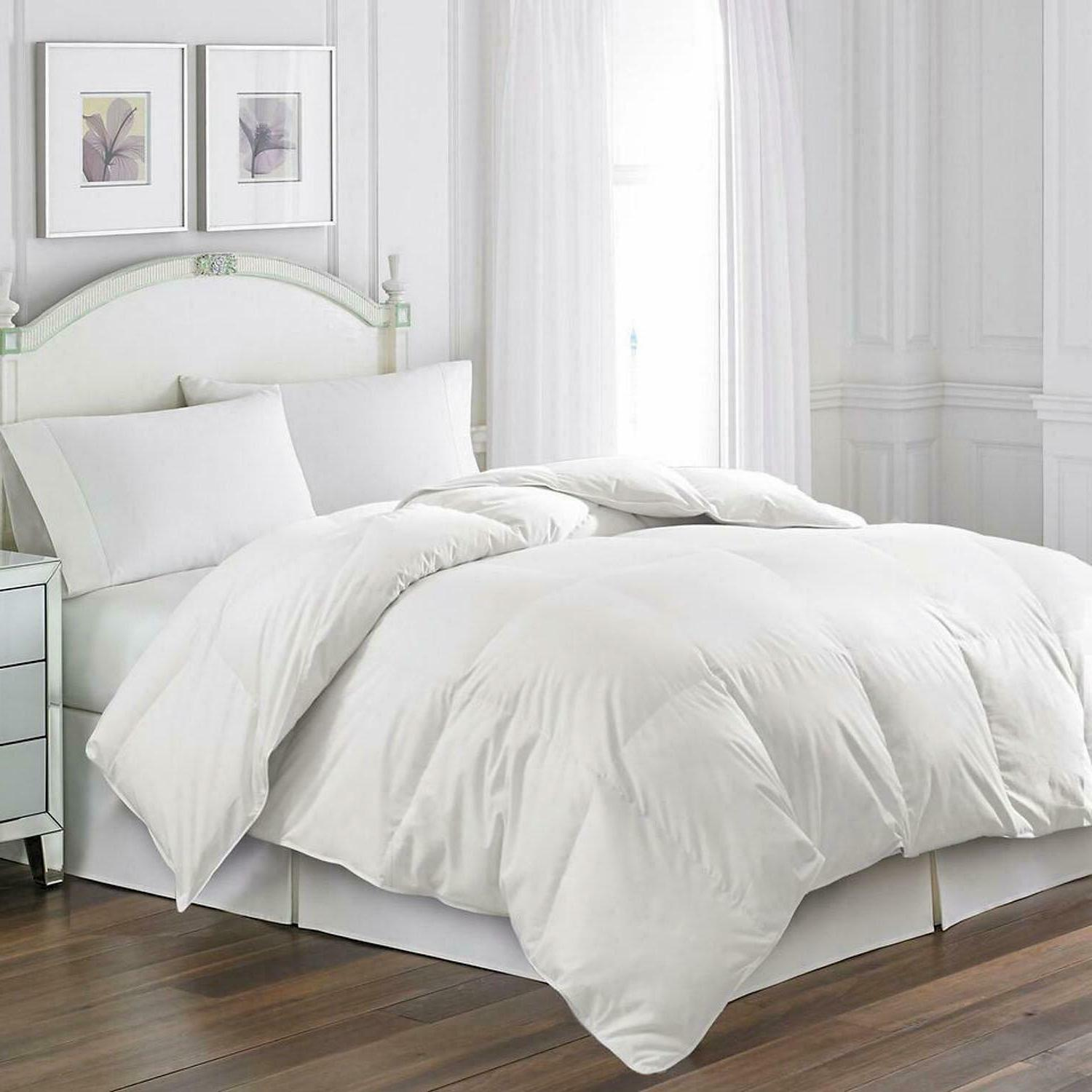 blue ridge goose feather comforter and quilted