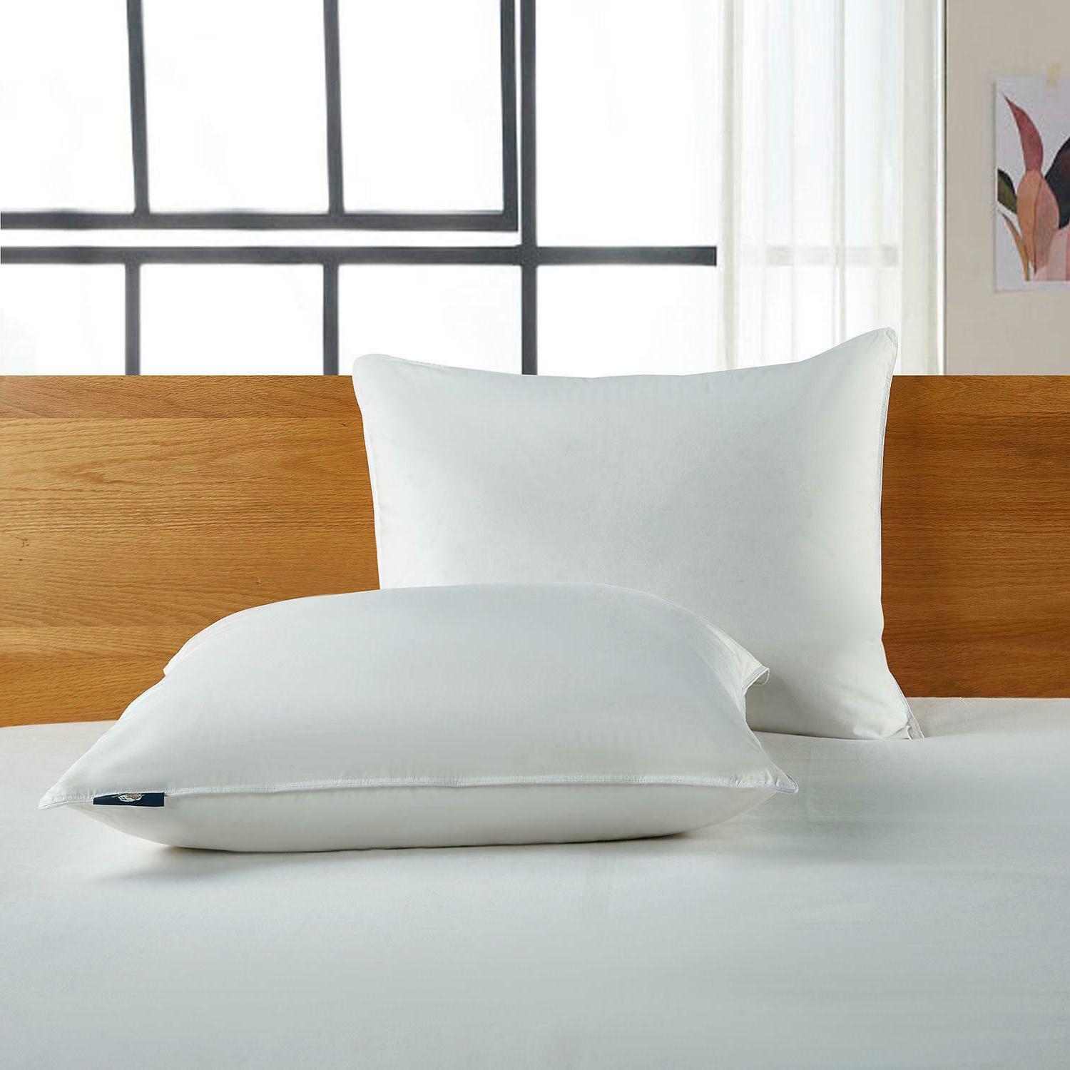 Serta Goose Feather And Sleeper Pillow