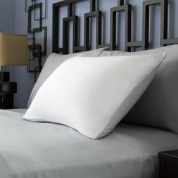 Pacific Coast Feather Spring Air Dream Form Pillow - White